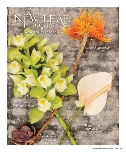 Editorial 2015 Spring:Summer Issue-FlowerPicking_003
