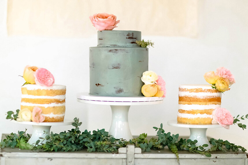 Naked Cakes 3 - EverSomething, Watson&payne Photography, All Things Cake