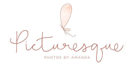 Picturesque Photos by Amanda Photography