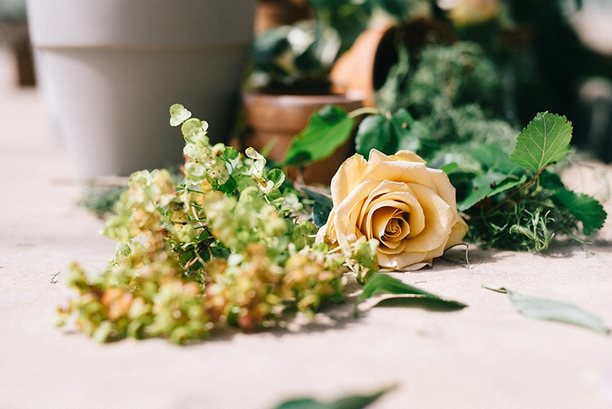 BOK_GreenhouseFlorals-38