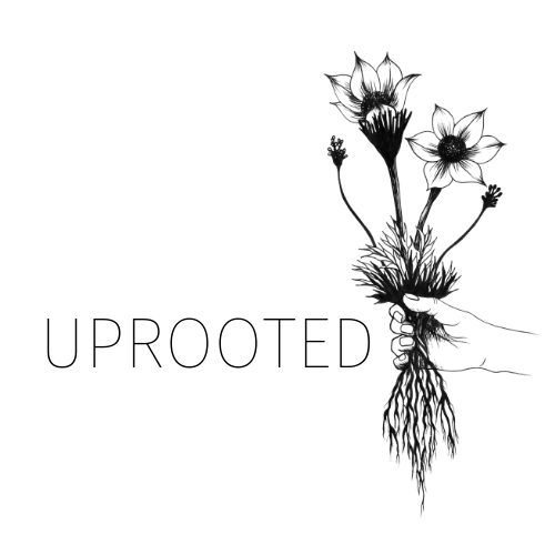 Uprooted Designs - Oklahoma