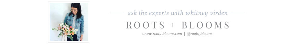 BOOSS20_AskTheExpert_Blog_Footers_RootsBlooms