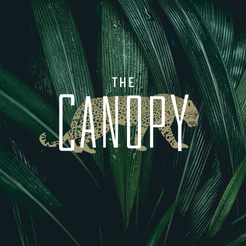 The Canopy - Oklahoma