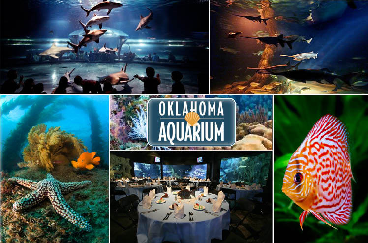 Oklahoma Aquarium in Jenks, Oklahoma, available for Oklahoma weddings and receptions